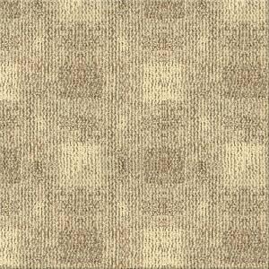 Beaulieu Carpet Burber Collection