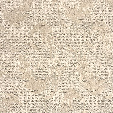 Shaw flooring alliance carpet floor matttroy for Alliance flooring