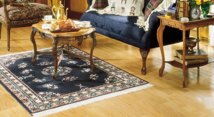 Bay Area Area Rugs | Shag Area Rug | Floral Area Rug | Persian | Oriental | Contemporary | Braided